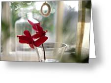 Flower And Window Greeting Card