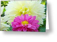 Flower Art Print White Pink Dahlia Floral Canvas Baslee Troutman Greeting Card