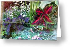 Flower Box Greeting Card