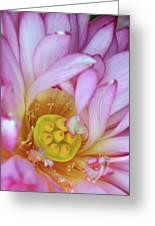 Flower Center Greeting Card