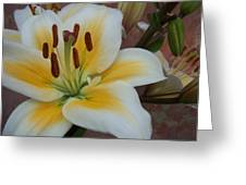 Flower Close Up 3 Greeting Card
