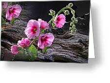 Flower Country Greeting Card