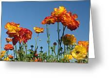 Flower  Dance Greeting Card