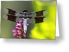 Flower Dancer Greeting Card