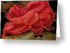 Flower Dusting Greeting Card