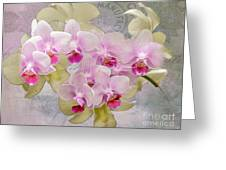 Flower-d Greeting Card