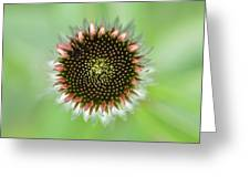 Flower Face Greeting Card