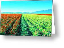 Flower Farm 1 Greeting Card
