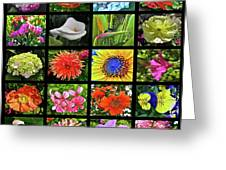 Flower Favorites Greeting Card
