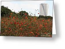 Flower Field In Hama-rikyu Gardens Greeting Card