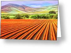Flower Field Near Los Osos Greeting Card