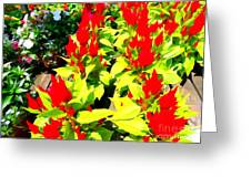 Flower Flames Greeting Card