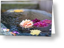 Flower Floats Greeting Card