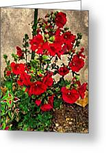 Flower Garden 11 Greeting Card