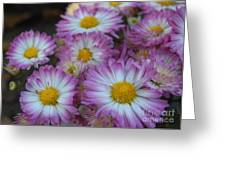 Flower Garden Greeting Card by Garnett  Jaeger