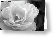 Flower Ghost Greeting Card