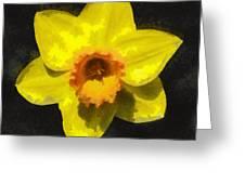 Flower - Id 16235-220300-0389 Greeting Card