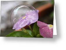 Flower In A Bubble Greeting Card