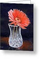Flower In Crystal Vase Greeting Card
