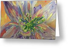 Flower In Morning Light Greeting Card