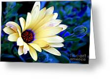 Flower In The Mist Greeting Card