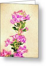 Flower-j Greeting Card