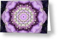 Flower Kaleidoscope 004 Greeting Card