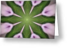 Flower Kaleidoscope_003 Greeting Card