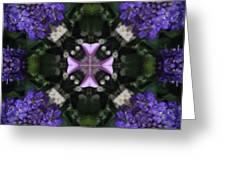 Flower Kaleidoscope_004 Greeting Card