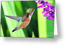 Flower Kisser Greeting Card