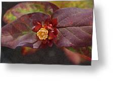 Flower Leaves Greeting Card