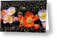 Flower Line Dance Greeting Card
