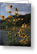 Flower Mountain View Greeting Card