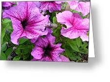 Flower Overload Greeting Card