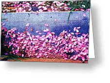 Flower Petals Saturated Ae Greeting Card