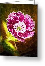 Flower Pop 2 Greeting Card