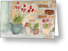 Flower Pots Greeting Card