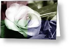 Flower Quadrant Colors Greeting Card