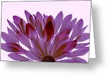 Flower Rise- Lavender Greeting Card