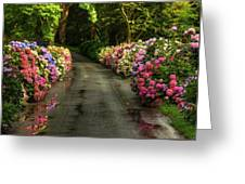 Flower Road Greeting Card
