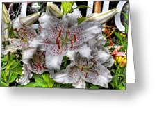 Flower Shop Lillies Greeting Card