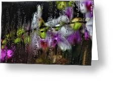 Flower Shop Window 1 Greeting Card