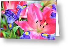 Flower Soft  Greeting Card