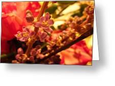 Flower Stem Greeting Card