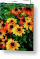 Flower Sunshine Greeting Card