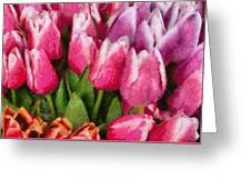 Flower - Tulip - A Young Girls Delight Greeting Card