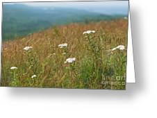 Flower View Of Mountains Greeting Card
