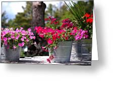 Flower Wagon Greeting Card
