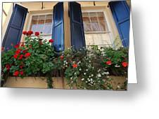 Flower Window In Charleston Sc Greeting Card