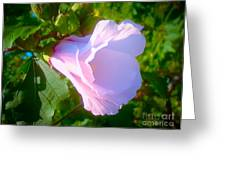 Flower With Painted Look Greeting Card